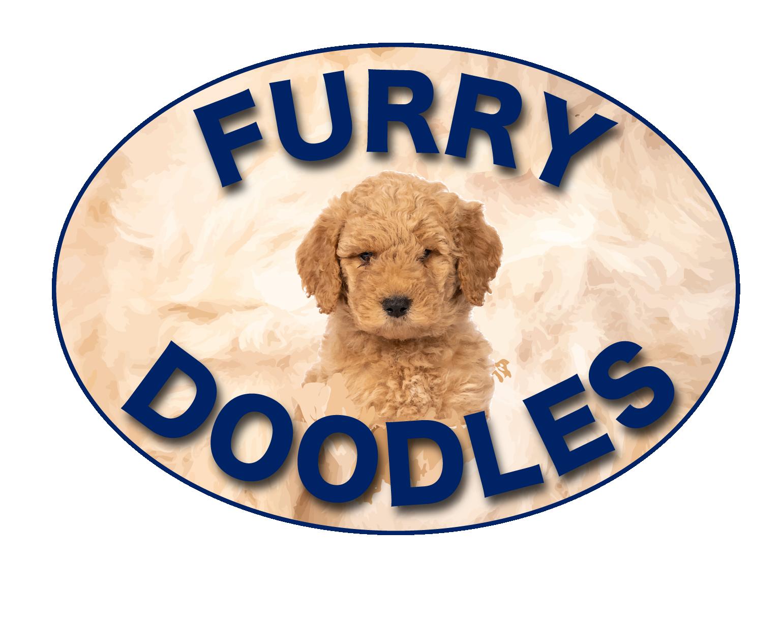 Furry Doodles